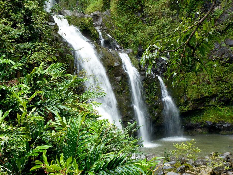 kauai, waterfall, jungle